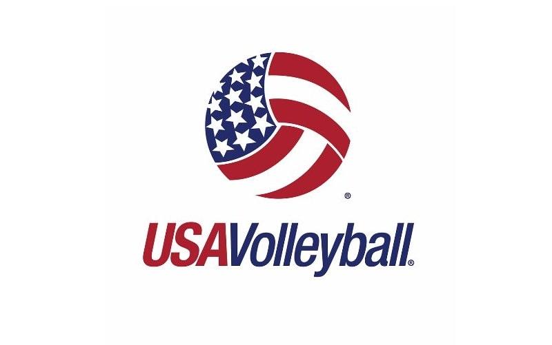Mẫu logo bóng chuyền đẹp